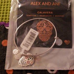 Alex and Ani Calavera color infused bangle
